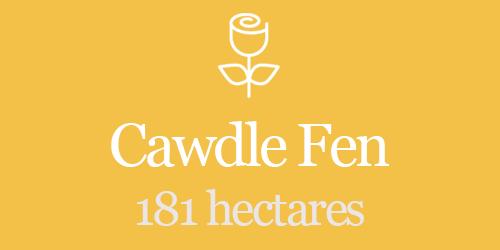 Cawdle Fen